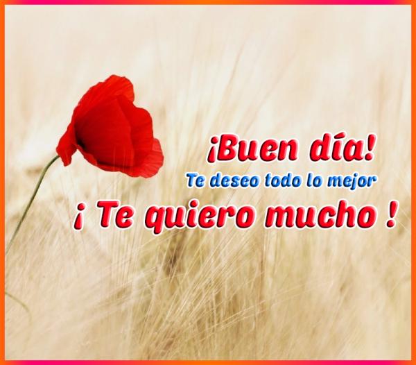 Buen dia te deseo lo mejor