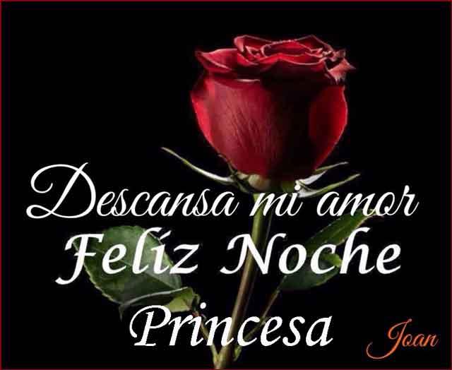 buenas noches mi princesa