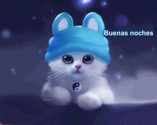 Buenas noches tierno gatito
