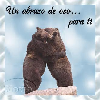 Abraso de oso para ti