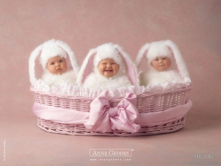 3 hermosos bebes disfrazados de conejo