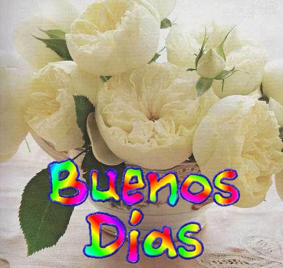 Saludo de buenos dias flores blancas