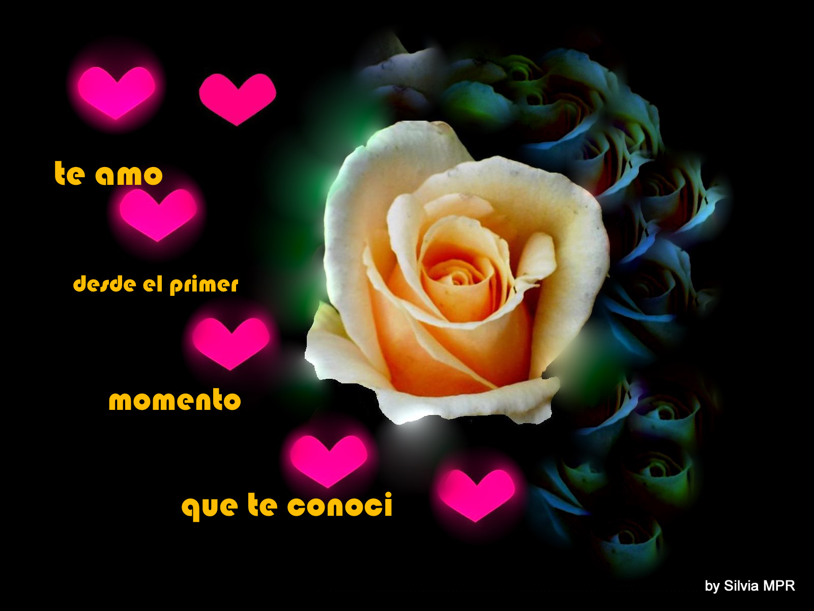 Rosa con corazones y frase de amor