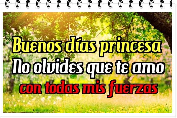 Buenos dias princesa te amo