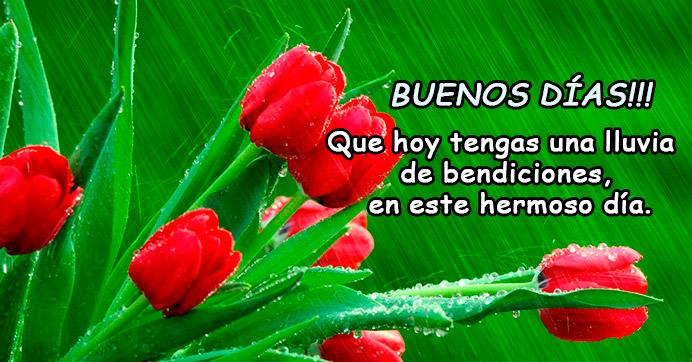 Buenos dias con flores rojas