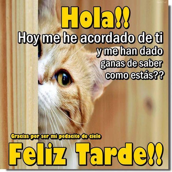 Hola feliz tarde