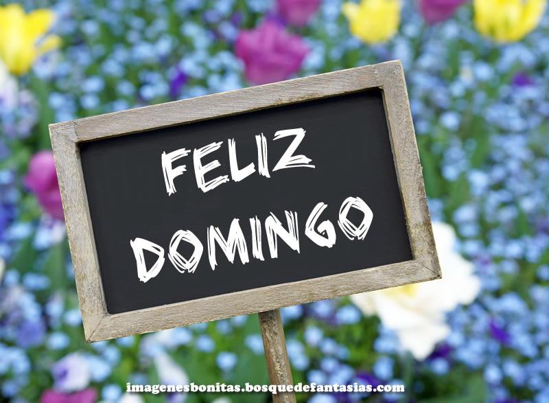 Saludo de Feliz dia domingo