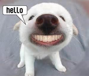 hello sonrisa graciosa